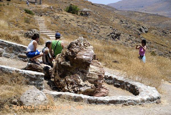 Versteinerte Wald, Lesbos